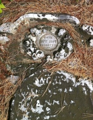 old gravestone saying gone but not forgotten