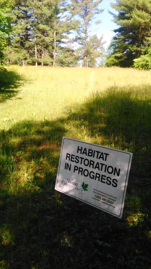 green space with a sign saying habitat restoration in progress