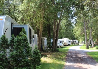 trailers in a campground